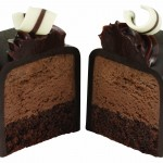 double chocolate cake bite